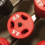 Muskelkater vom Sport zeigt uns, dass wir bestimmte Muskeln schon lange nicht mehr bewegt haben